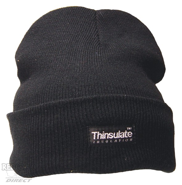 cworkwear_thinsulate_beanie.jpg